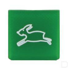 Wipschakelaar symbool groen snel/haas productfoto