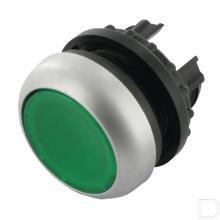 Signaaldrukknop vlak groen, vast productfoto