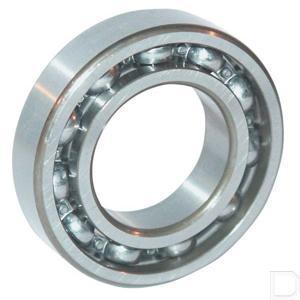 bearing_6005.jpg